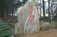 2018年春节,在武汉市内,主要参观湖北省博,武大樱花大道,辛亥革命武昌起义纪念馆(当地人叫红楼),