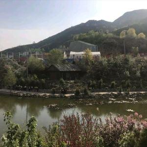 玉泉山城郊森林公园旅游景点攻略图