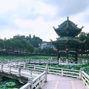 富顺西湖旅游景点攻略图