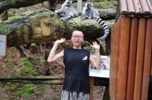 碧峰峡动物园