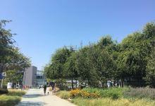 高科技中心硅谷一日游