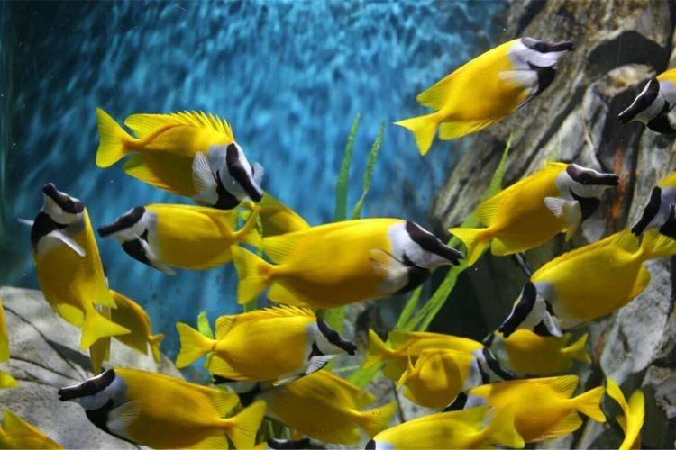 린이 극지해양세계2