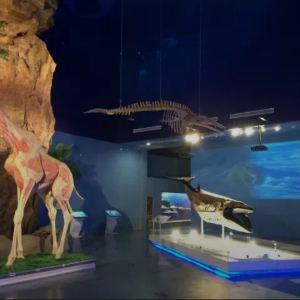 生命奥秘博物馆旅游景点攻略图