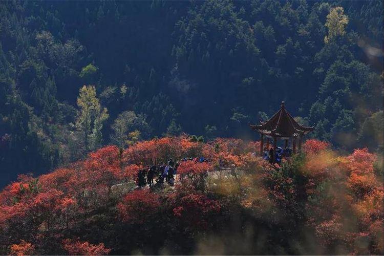 Hongshancuigu Sceneic Area4