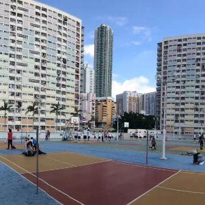彩虹邨旅游景点攻略图