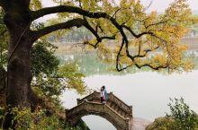 行走在江南的晚秋中~层林尽染,叠翠流金