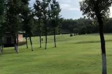 高尔夫球场⛳️