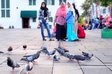 #向往的生活#雅加达老城,时间在这里凝固