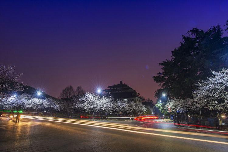 Wuhan University4