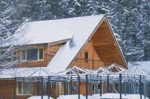 这里一下雪就像穿越到了北欧,连去四年都不腻!今年景区还任性对全国游客免票