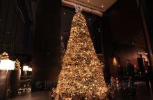 #神奇的酒店#上海宝格丽酒店圣诞点灯仪式,仪式感满满~