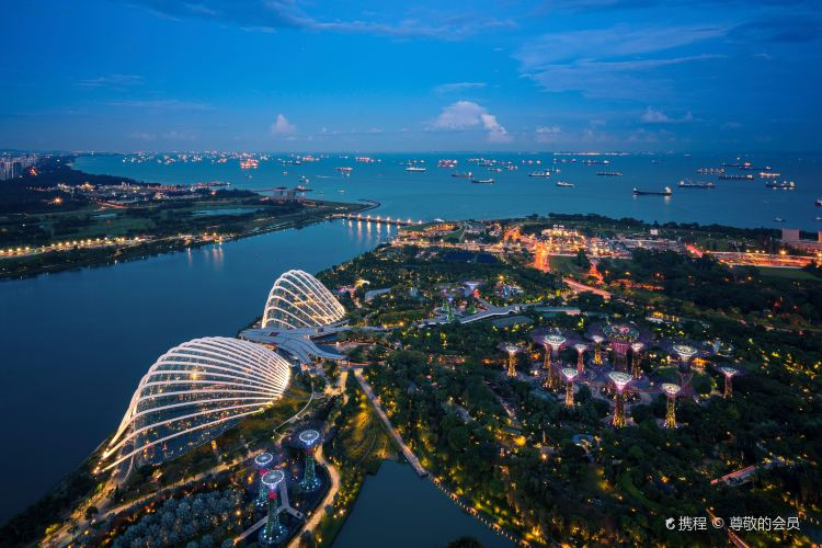 Sands SkyPark1