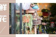 杭州最大的花市,居然藏在寸土寸金的市中心!这里的花比大白菜还便宜!