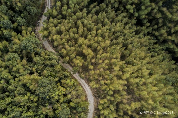 난쿤산 국립산림공원1