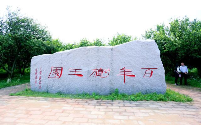 抚州市南丰宜黄三日游:莫问春日风光好 文化生态总相宜