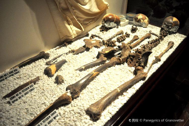 Hatay Archaeological Museum4