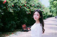 海南女孩自驾去西藏D3,闲逛灵山县城,在广西吃煲仔饭怪吗?