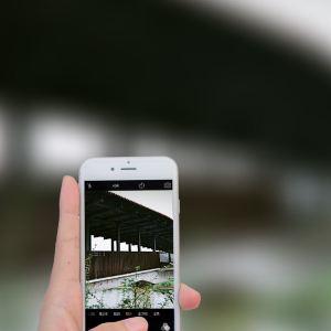 西来古镇旅游景点攻略图