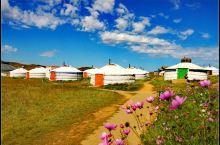 2019年出游第四站--蒙古国