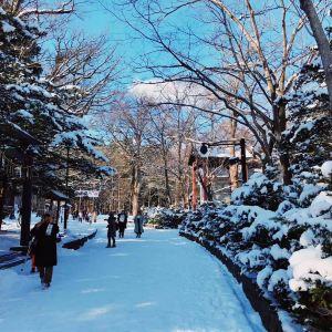 北海道神宫旅游景点攻略图
