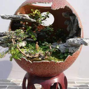 中国园林博物馆旅游景点攻略图
