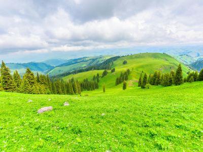 那拉提国家森林公園