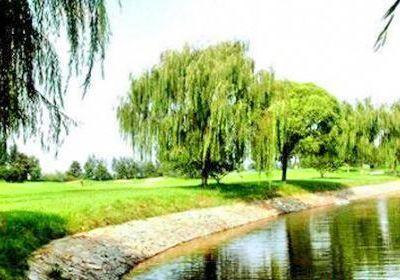 Yichang Sanxia Tianlongwan International Golf Club (Driving Range)