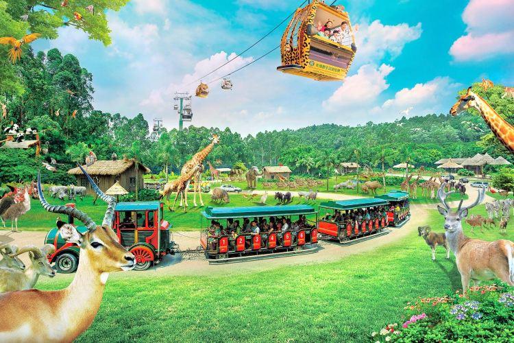 Chimelong Tourist Resort1