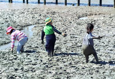 Man Ecology Mud Flat Center