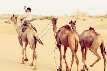 走进印度西部,大漠孤烟中赏壮美日落