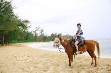 海边牧场骑马