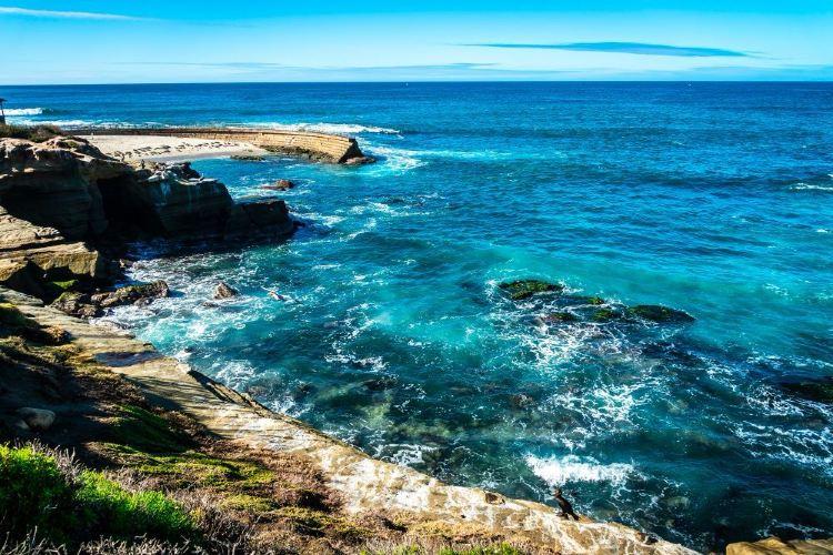 La Jolla Shores3