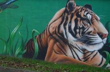 🇩🇪 德国杜伊斯堡的街头艺术至关重要