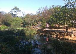 大溪保健植物园