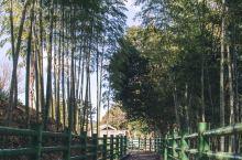杵筑,被遗忘的九州小京都