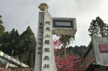 台湾阿里山