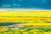 中国最壮观世界最大的花海一青海门源百里油菜花海 有人说,青海门源油菜花海,是中国最大气的油菜花田,这