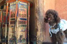 带着狗狗去旅行之🐶和转经筒