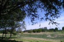 昌邑国家湿地公园