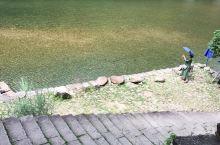 温州石桅岩