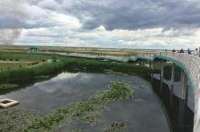 大庆龙凤湿地