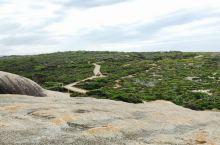 「私奔袋鼠島」從前只知大洋路 如今心中只有Flinders Chase