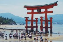 氢气球X量子号:严岛神社,海中的奇景!