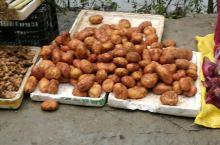 巴马街边的土豆
