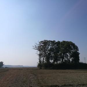 泰和游记图文-《江畔独步寻花》之三--江畔古村的仁山与智水【江西泰和县】