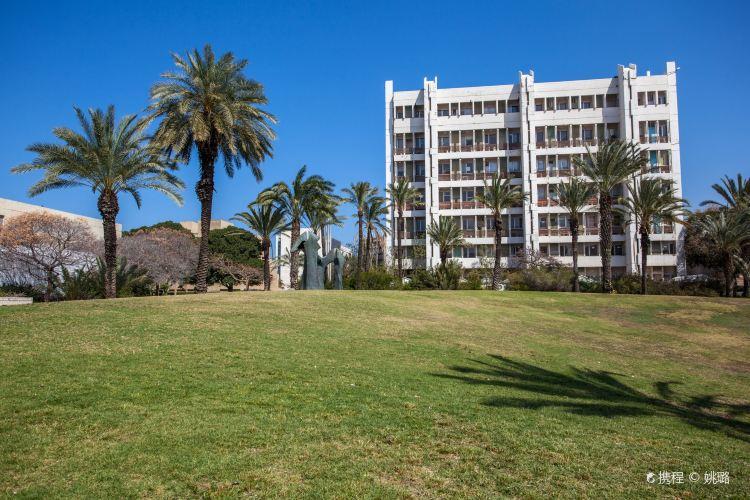Tel Aviv University2