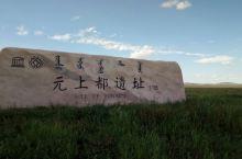 #南航西游记#锡林草原之八:金莲花簇拥着元上都遗址