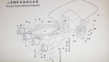 秦陵铜车马