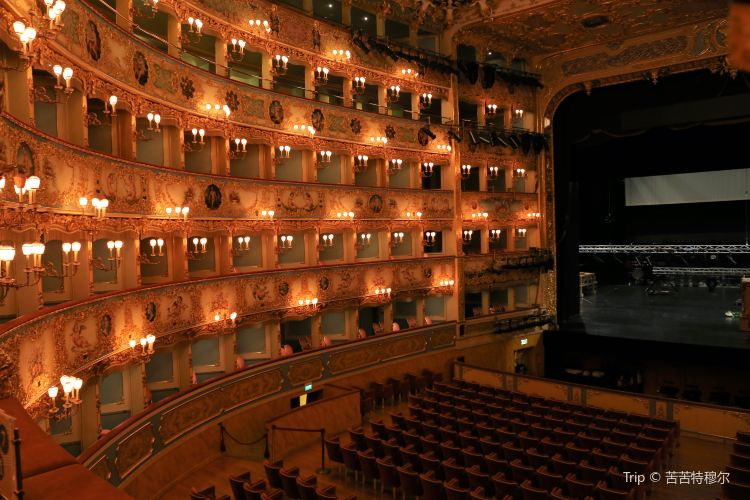 Teatro La Fenice di Venezia1