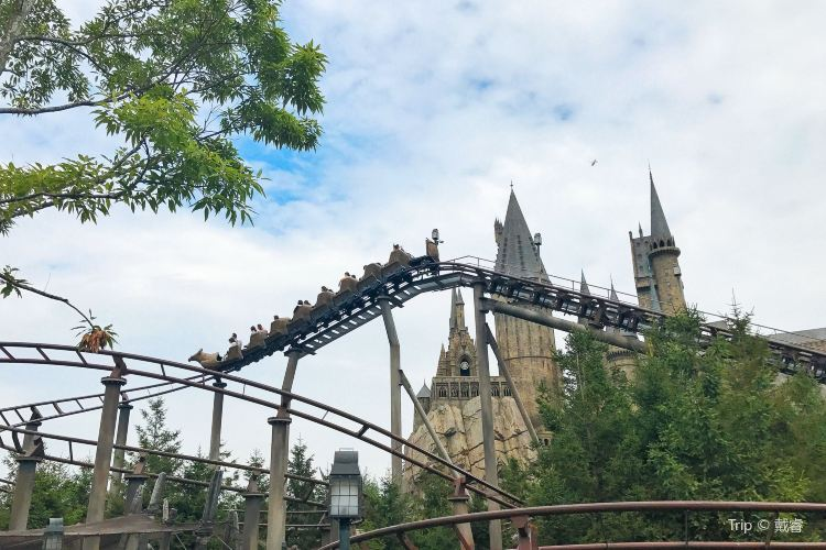 The Wizarding World of Harry Potter2